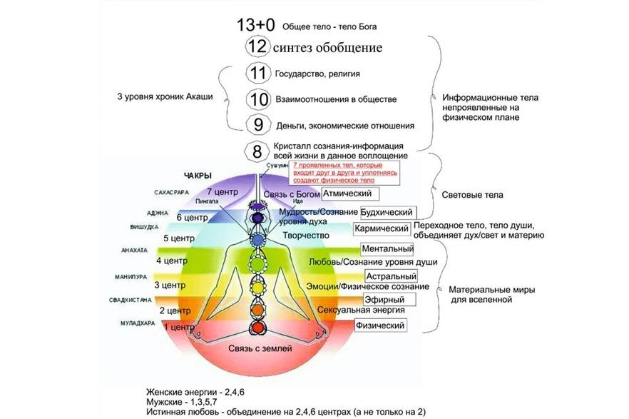 структура души картинки