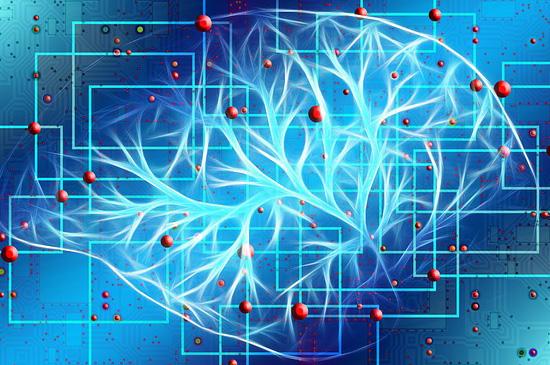 Курс «Медитации на мозг»